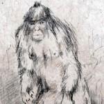 Una ricostruzione dell'uomo scimmia