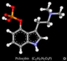 LA MOLECOLA CHIMICA DELLA PSILOCIBINA