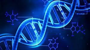 CI SONO GENI NEL DNA UMANO CHE HANNO SUBITO FORTI MUTAZIONI TUTTE FAVOREVOLI