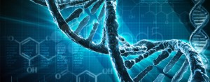 EDITING GENETICO POTREBBE RIPORTARE IN VITA SPECIE ESTINTE