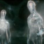 alien-life-forms
