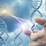IL DNA È STATO MODIFICATO CON L'ELIMINAZIONE DI UN GENE SPECIFICO